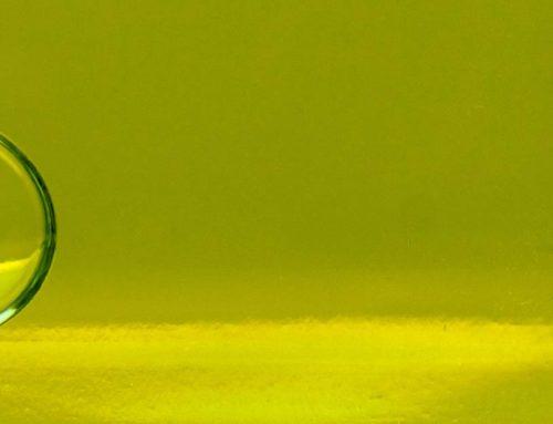 Miért más az olivaolajunk